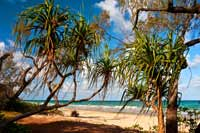 Queensland, Noah Beach im Cape Tribulation